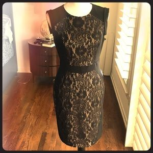 ADORABLE Adrianna Papell Mesh Dress